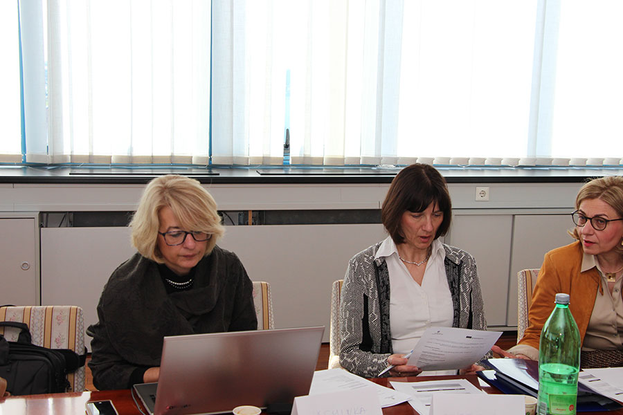 Our first and second meeting of the Working Group